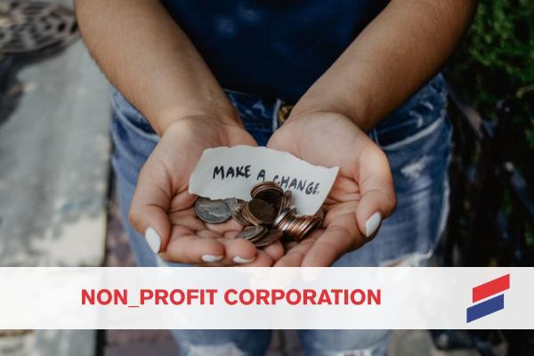 Nonprofit Organisation - Startup Flame