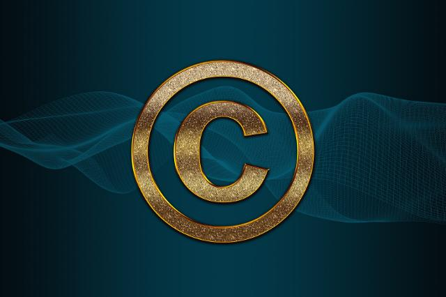 Copyright - Startup Flame