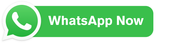 WhatsApp - Startup Flame